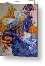 Wet Hens Greeting Card by Kris Parins