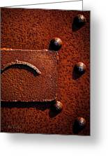Wet Rust Greeting Card by Bob Orsillo
