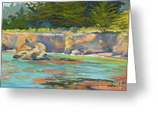 Whalers Cove Point Lobos Greeting Card by Rhett Regina Owings