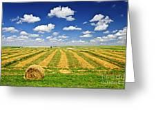 Wheat Farm Field And Hay Bales At Harvest In Saskatchewan Greeting Card by Elena Elisseeva