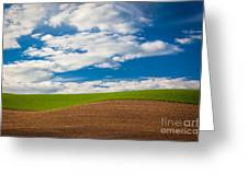 Wheat Wave Greeting Card by Inge Johnsson