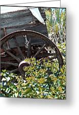 Wheels In The Garden Greeting Card by Glenn McCarthy Art and Photography