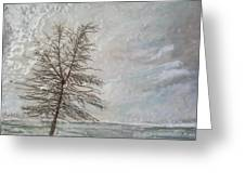When Grey Matters Greeting Card by Victoria Primicias