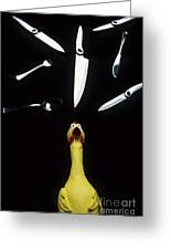 When Rubber Chickens Juggle Greeting Card by Bob Christopher