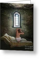 Where Freedom Is A Dream Greeting Card by Maureen Tillman