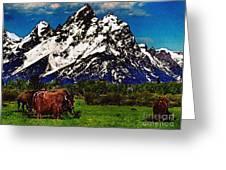 Where The Buffalo Roam Greeting Card by Bob and Nadine Johnston