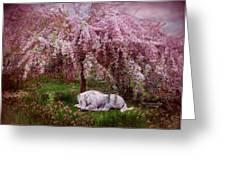 Where Unicorn's Dream Greeting Card by Carol Cavalaris