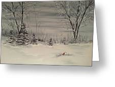 Whipple Lake Greeting Card by Valorie Cross