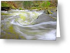 Whirlpool In Forest Greeting Card by Charline Xia
