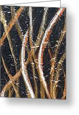 Whispering Reeds Abstract Triptych Paintings Greeting Card by Holly Anderson