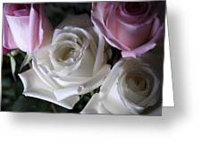 White And Pink Roses Greeting Card by Jennifer Lyon