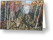 White Birch Trail Ride Greeting Card by Jeffrey Koss