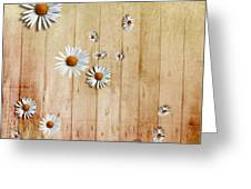 White Daisies Greeting Card by David Ridley