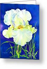 White Iris Greeting Card by Barbara Jewell