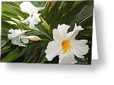 White Jasmine Greeting Card by Corey Ford
