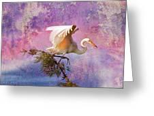 White Lake Swamp Egret Greeting Card by J Larry Walker