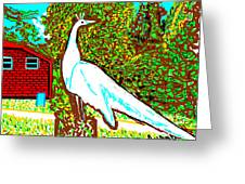 White Peacock Greeting Card by Anand Swaroop Manchiraju
