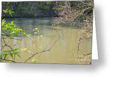 White River Greeting Card by Alys Caviness-Gober