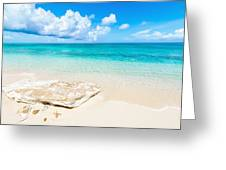 White Sand Greeting Card by Chad Dutson