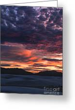 White Sands Sunset Greeting Card by Sandra Bronstein