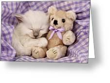 White Sleeping Cat Greeting Card by Greg Cuddiford