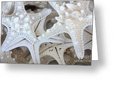 White Starfish Greeting Card by Carol Groenen