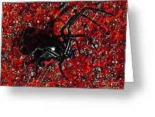 Wicked Widow - Rouge Greeting Card by Al Powell Photography USA