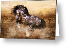 Wild And The Free Greeting Card by Shanina Conway