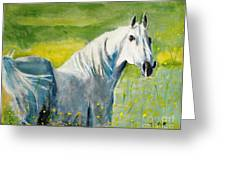 Wild As The Wind Greeting Card by Judy Kay