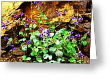 Wild Beauty Greeting Card by Ana Lusi