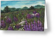 Wild Flower Field Greeting Card by Anastasiya Malakhova