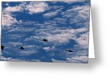 Wild Goose Heaven Greeting Card by Skip Willits