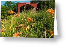 Wild Lillies And Holliwell Covered Bridge Madison County Iowa Greeting Card by Robert Ford