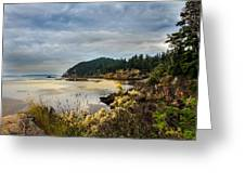 Wildcat Cove Greeting Card by Robert Bales