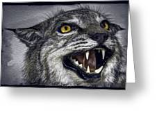 Wildcat Ferocity Greeting Card by Daniel Hagerman