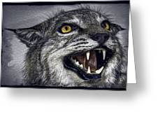 Wildcat Ferocity Greeting Card by Daniel Hagerman