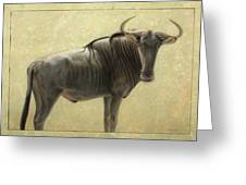 Wildebeest Greeting Card by James W Johnson