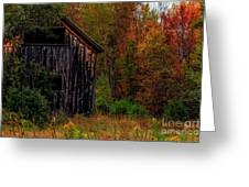Wilderness Barn Greeting Card by Brenda Giasson