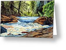 Wilderness River I Greeting Card by John W Walker