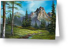 Wilderness Trail Greeting Card by C Steele