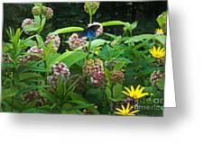 Wildflower Meadow Greeting Card by Kenneth Murray