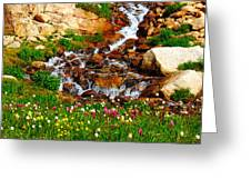 Wildflower Waterfall Greeting Card by Tranquil Light  Photography