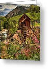 Wildflowers And Clouds Greeting Card by Adam Jewell