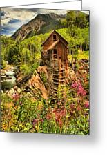 Wildflowers At Crystal Greeting Card by Adam Jewell