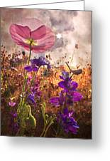 Wildflowers At Dawn Greeting Card by Debra and Dave Vanderlaan