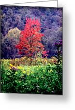 Wildwood Flowers Greeting Card by Karen Wiles