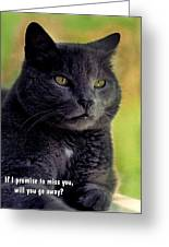 Will You Go Away Greeting Card by Mike Flynn