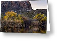 Willow Reflections Greeting Card by Dave Dilli