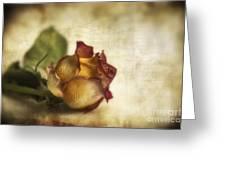 Wilted Rose Greeting Card by Veikko Suikkanen
