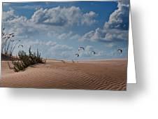 Wind 2 Greeting Card by Gilad Koriski